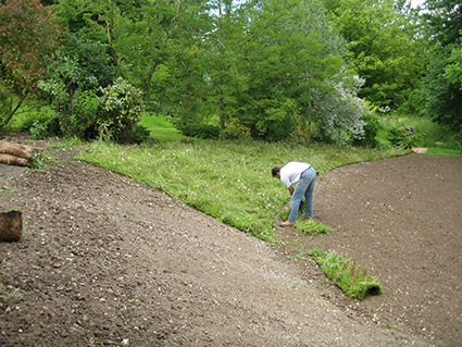 Laying the wildflower turf